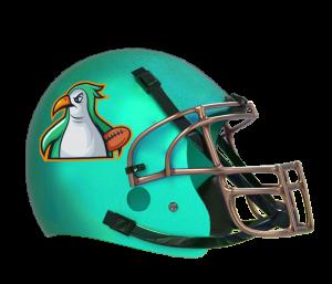 Ultimate Teams Penguins